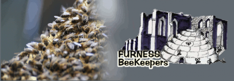 Furness Beekeepers Banner